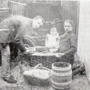 Wubben, fa. gebr., Eierengroothandel (1888 - 1975)
