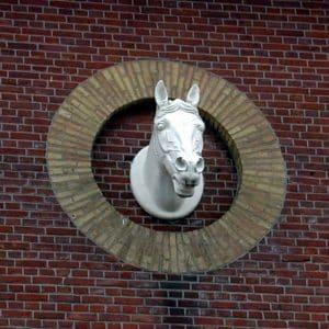 Paardenhoofd ALRO