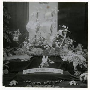 Alpina, bloemisterij (1891 - heden)